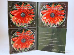 DivineCollaboration 4pp Tall Traypack 3xCD matte lamination
