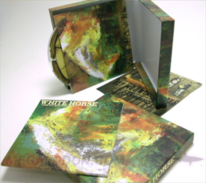 cd box set pacakging LP hinged box discs printed sleeves
