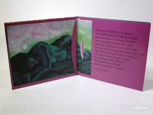 curved pocket cd jacket packaging