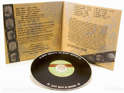Vinyl CD Disc, retro look