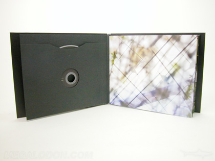 dvd book packaging with sleeve to hold disc